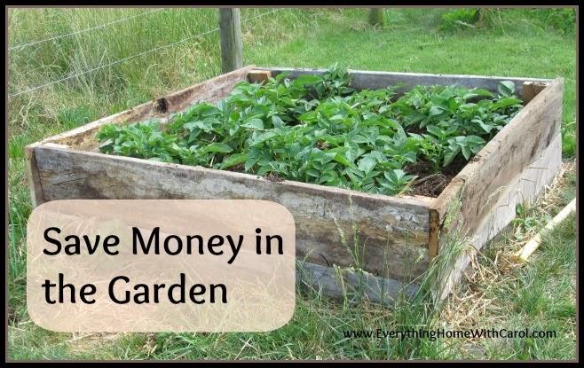 http://everythinghomewithcarol.com/start-now-save-money-garden/