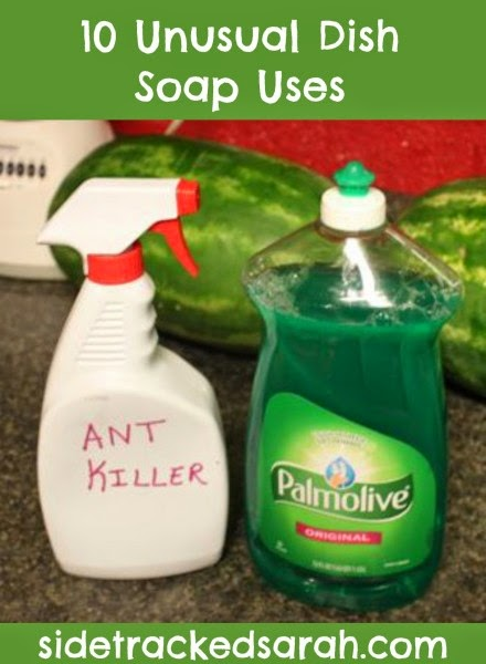 http://www.sidetrackedsarah.com/2014/08/10-unusual-dish-soap-uses-palmolive25ways-cbias/