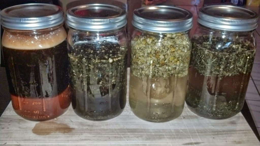 http://back2basichealth.blogspot.com/2014/10/how-i-make-echinacea-tincture.html
